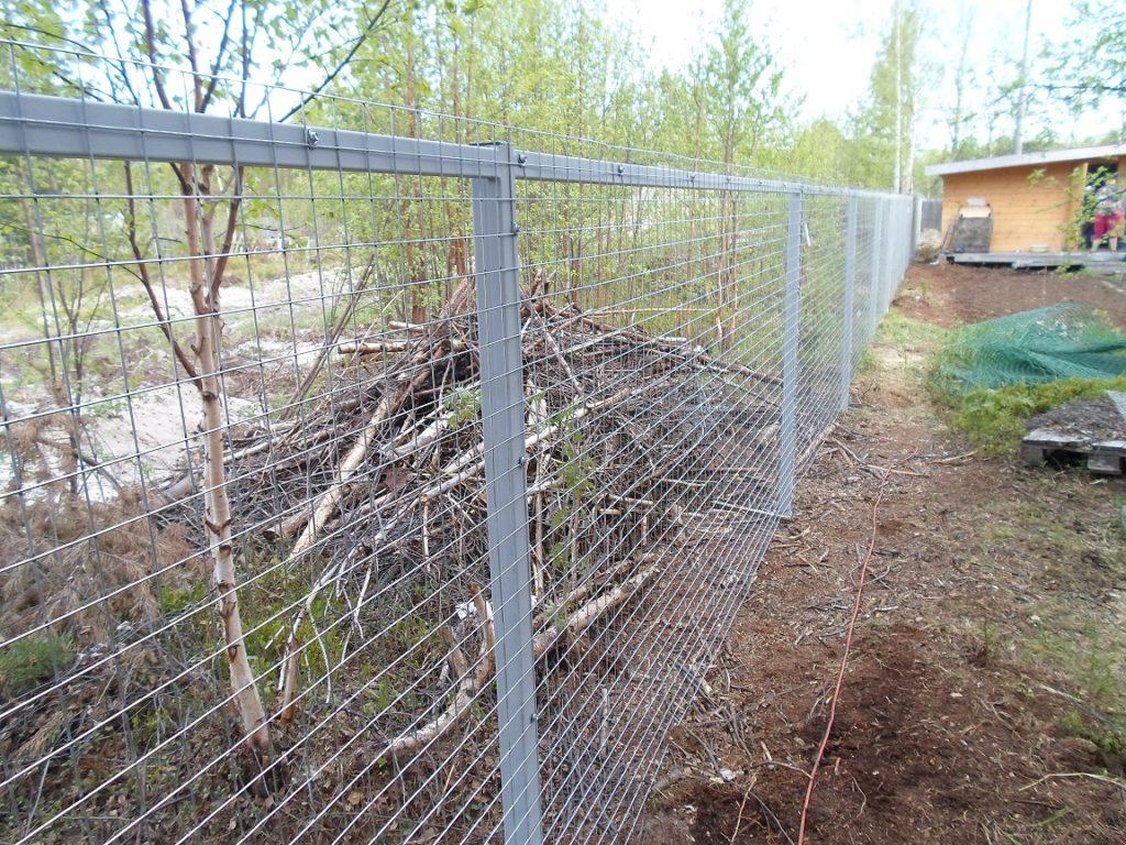 Забор из сетки в Архангельске
